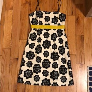 Adorable Milly Dress